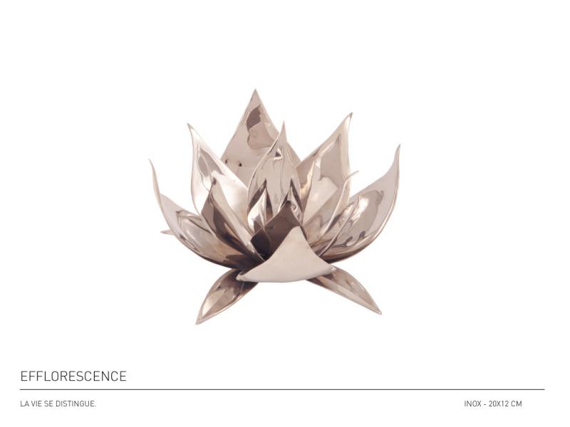 07-efflorescance