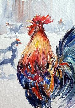 1-rooster-kovacs-anna-brigitta
