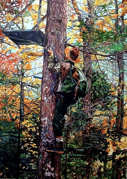 155355834_1maine_guide_climbing_a_tree_stand_baxter_state_park_maine