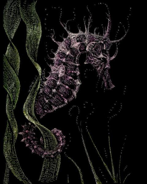 seahorsesm