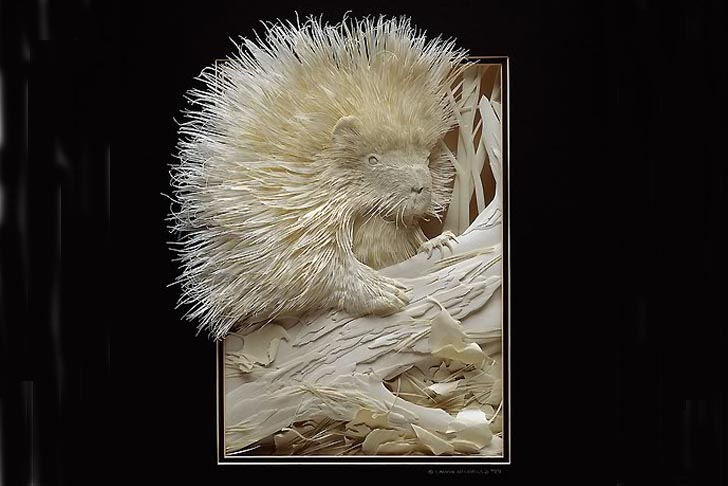 calvin-nicholls-canada-woodland-paper-art-animals-1