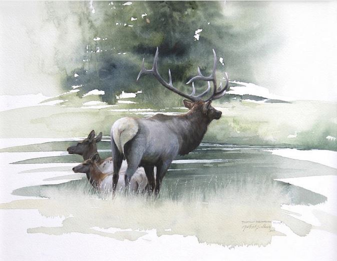 Morten-E.-Solberg.-ZHivotnyie-akvarelyu.-Crossing-The-Madison