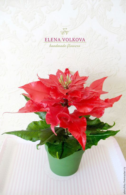 aa2efac36fc511297071ea96deej-dlya-doma-i-interera-puansettiya-novogodnij-dekor