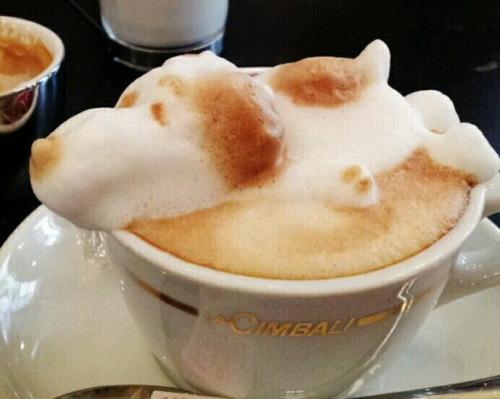 coffe2