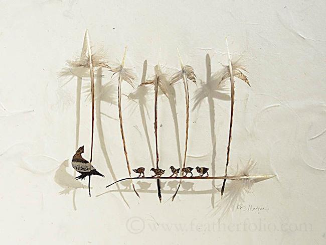 feather-cutting-art-by-chris-maynard-11
