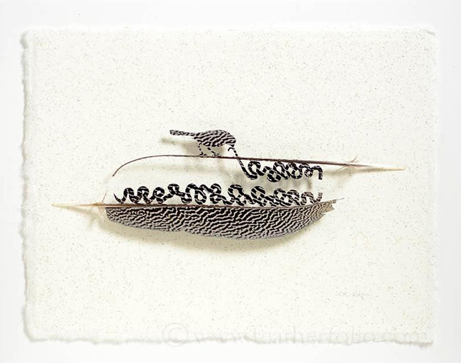 feather-cutting-art-by-chris-maynard-20