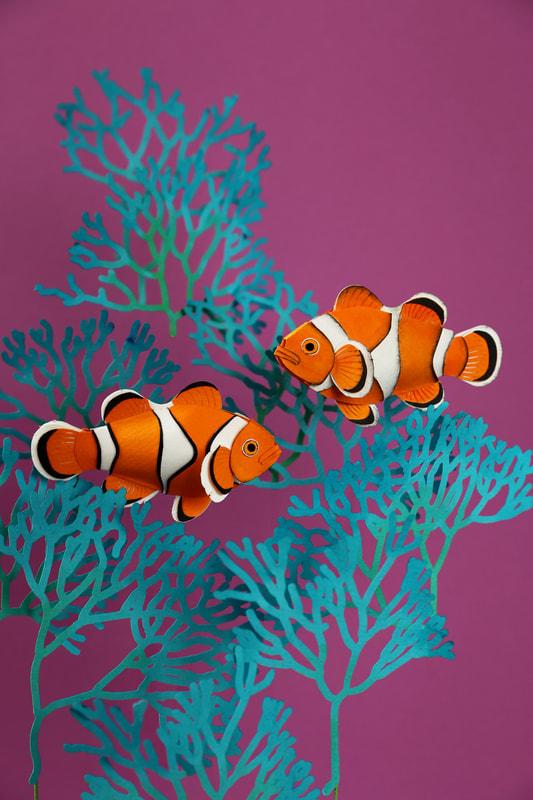 fish2a-orig_orig