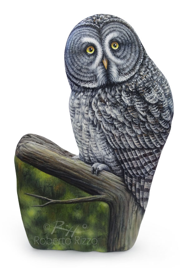 perched-great-grey-owl